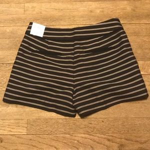 LOFT Shorts - Ann Taylor Riviera Striped Shorts